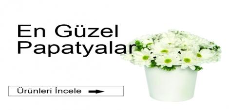 PAPATYALAR
